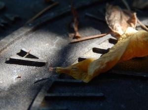 a leaf on a sundial © Cristi Jenkins